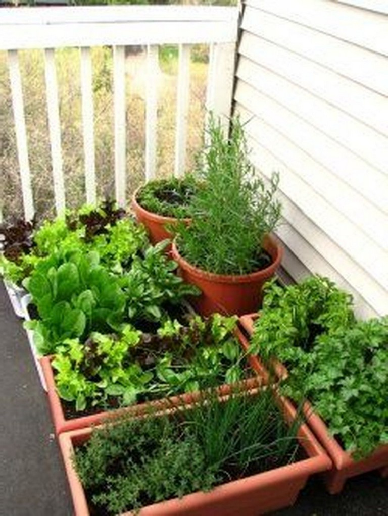 45 Top Small Vegetable Garden Ideas On A Budget - Page 7 of 51
